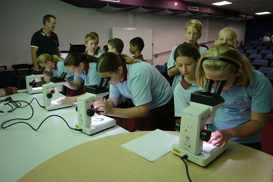 Students looking through microscopes