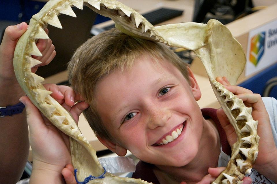 Student holding up and looking shark teeth bone jaw